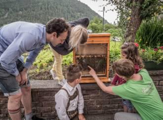 Der Bienenzucht-Apicoltura Gocce d'oro - Giardino d'Erbe - G1