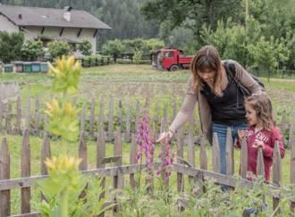 Der Bienenzucht-Apicoltura Gocce d'oro - Giardino d'Erbe - G3